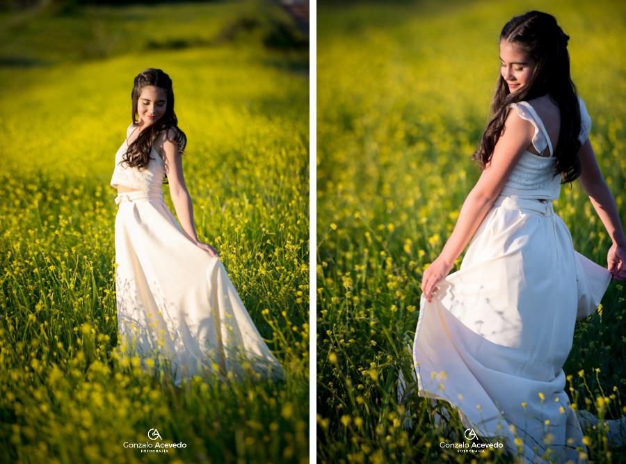 Sofi book de 15 naturaleza flores campo fifteens ideas geniales originales #gonzaloacevedofotografia gonzalo acevedo