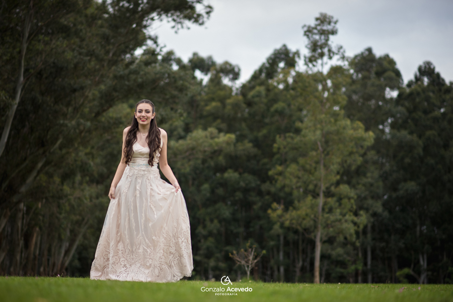 Tizi book15 trash the dress bosque vestido dress ideas geniales originales #gonzaloacevedofotografia gonzalo acevedo gri becker