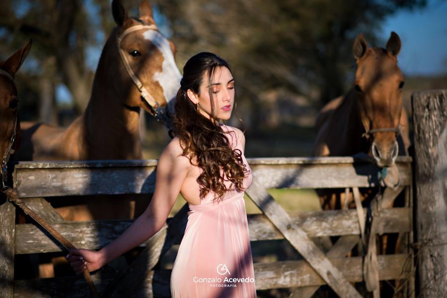 book de 15 con caballos de campo orignal y diferente Gonzalo Acevedo
