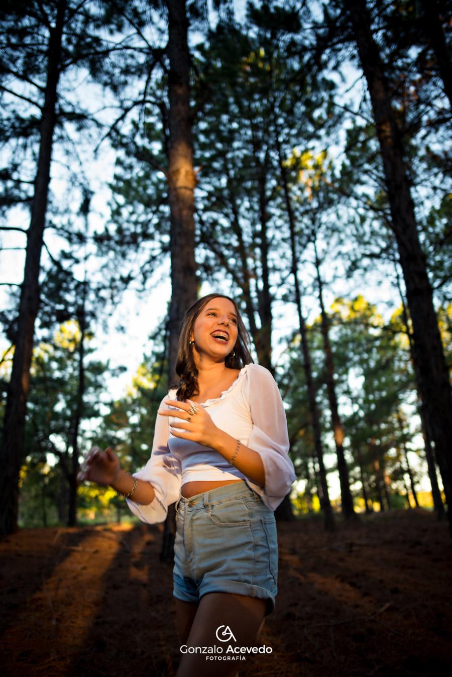 book de campo con bosque de pinos Gonzalo Acevedo